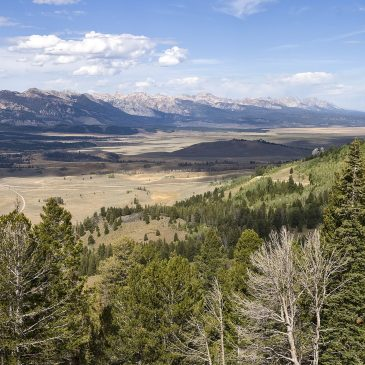 Best Hikes in Sawtooth National Forest (ID)