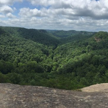 Best Hikes in Daniel Boone National Forest (KY)