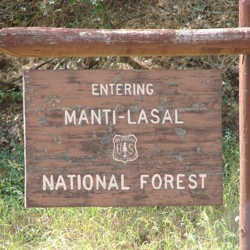 Best Hikes in Manti-La Sal National Forest (UT)