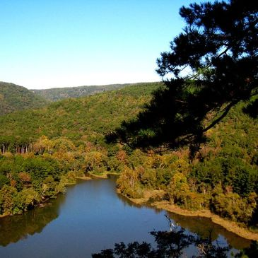 Best Hikes in Ozark – St. Francis National Forests (AR)