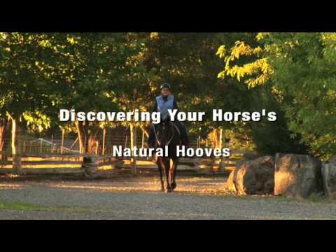 Learn to trim your own horse's hooves with this DVD. Ce...