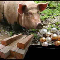 Planks, Pearls & Pigs. . .