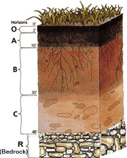 Soil_profile