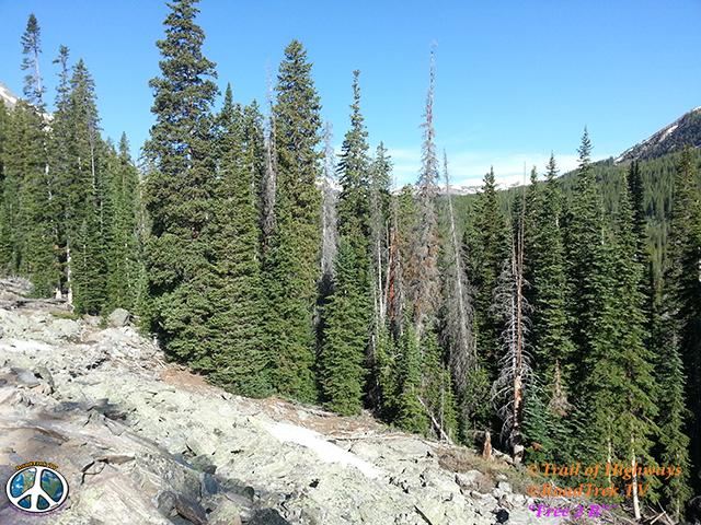 Buena Vista-Ptarmigan Lake Trail-Hiking-Colorado-Trail of Highways-RoadTrek TV-Social SEO-Organic-Content Marketing-Tom Ski-Skibowski-Photography-Travel-120