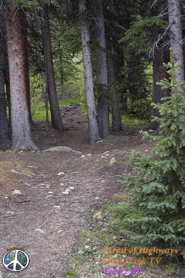 Mount Yale Trail-14er-Colorado-Hiking-Climbing-Trail of Highways-RoadTrek TV-Social SEO-Organic-Content Marketing-Tom Ski-Skibowski-Photography-Travel-3