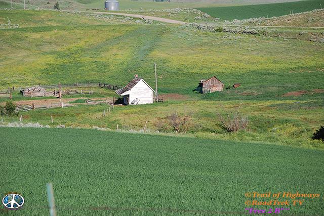 Montana-Backroads-Spring-Birdwatching-Trail of Highways-RoadTrek TV-Social SEO-Organic-Content Marketing-Tom Ski-Skibowski-Photography-Travel-Media-31