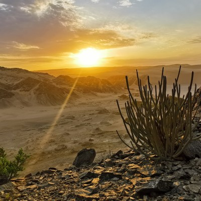 Trans Namibia Expedition
