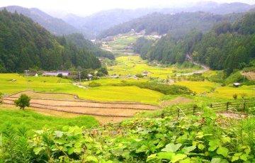 Okumikawa_image