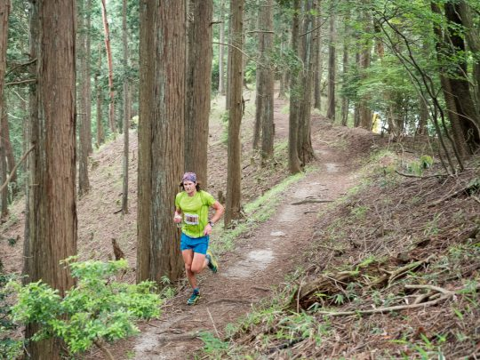 Mt-Hiei-50k-2016-Joe-Grant-trail