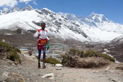everest marathon 2014-345