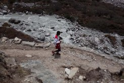 everest marathon 2014-350