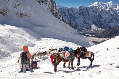 manaslu trail race nepal-1995