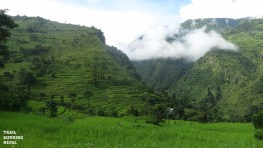 We were soon up in the 'low hills' amidst rice paddies and clouds