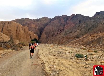 eilat desert marathon 2018 photos abel trail running israel (6)