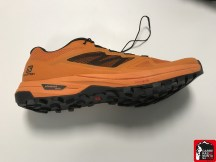salomon trail running shoes 2020 by mayayo (4)