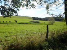 saftige Weiden in der Uckermark