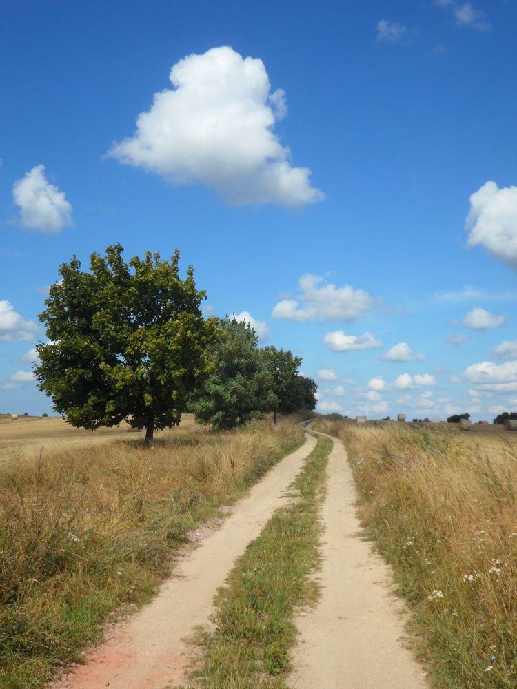 Weg durch die Uckermark