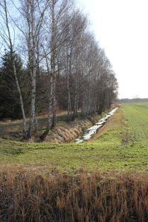 Am Rand der Schönwalder Heide