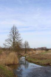 Muhrgraben