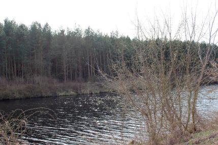 Havelkanal mit Blick auf den Apfelhorst