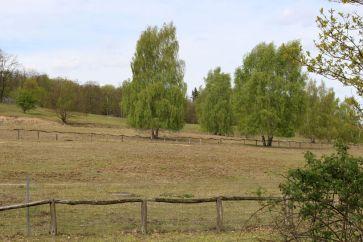 Weideflächen neben dem Fort Hahneberg
