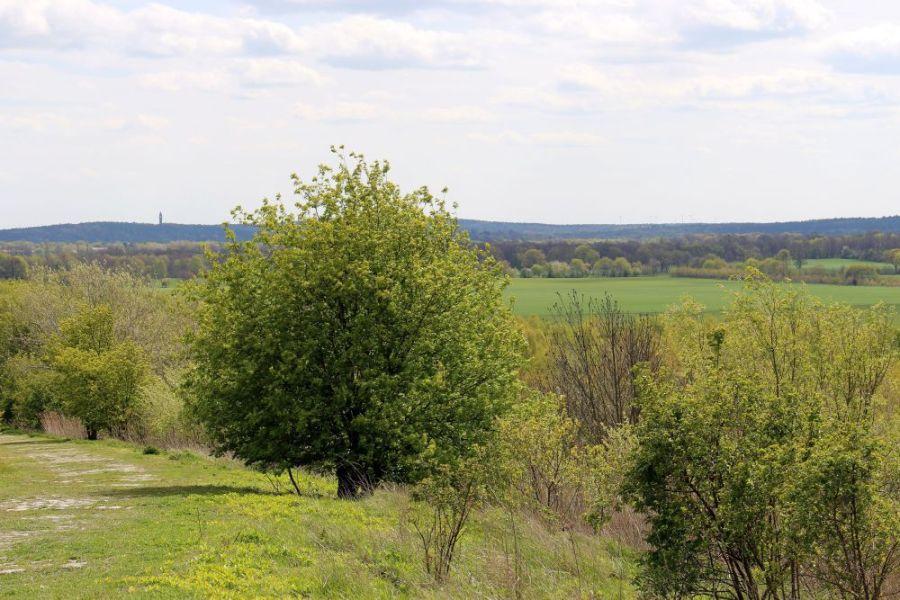 Blick Richtung Gatow