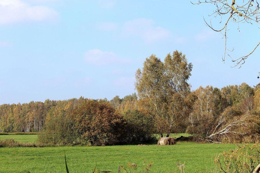 Am Havel-Glien-Radweg