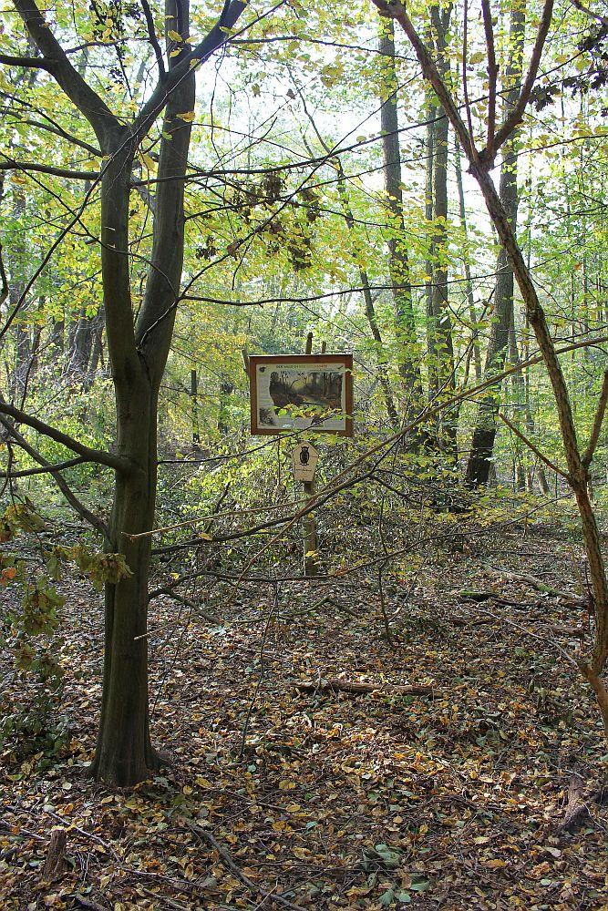 Naturlehrtafel am Naturdenkmal Teufelspfuhl