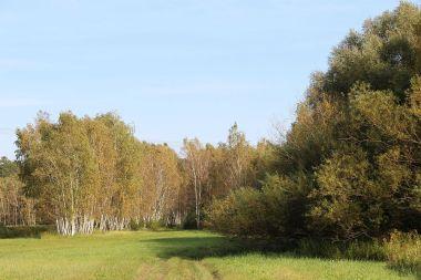 An den Laßzinswiesen