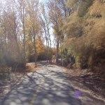 Virgin River paved bike Trail in Utah