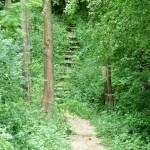 side trail