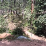 Colorado Trail segment 3