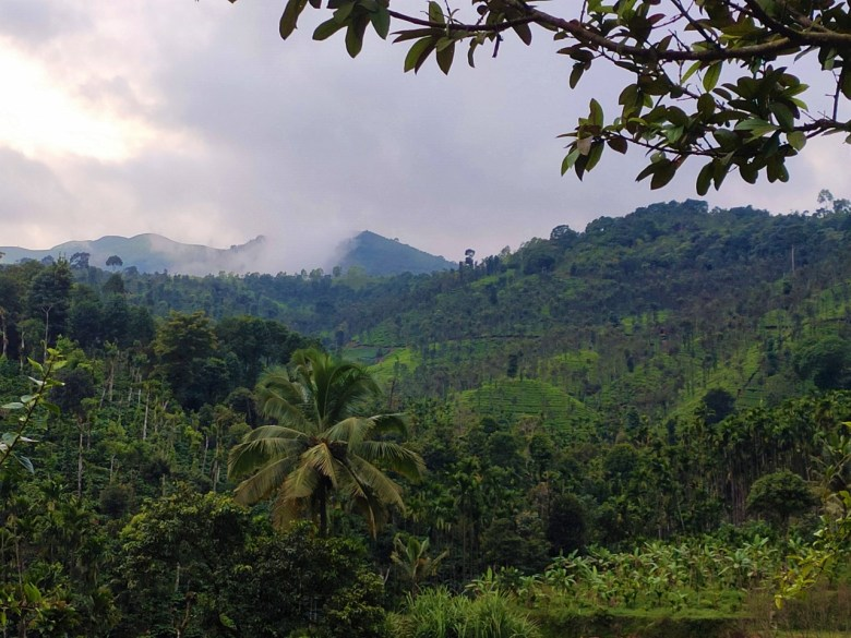 Beautiful Landscapes En Route Elaneeru Falls