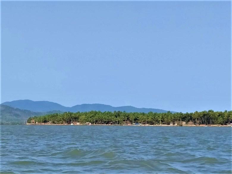 Aganashini Estuary Mangroves Kumta