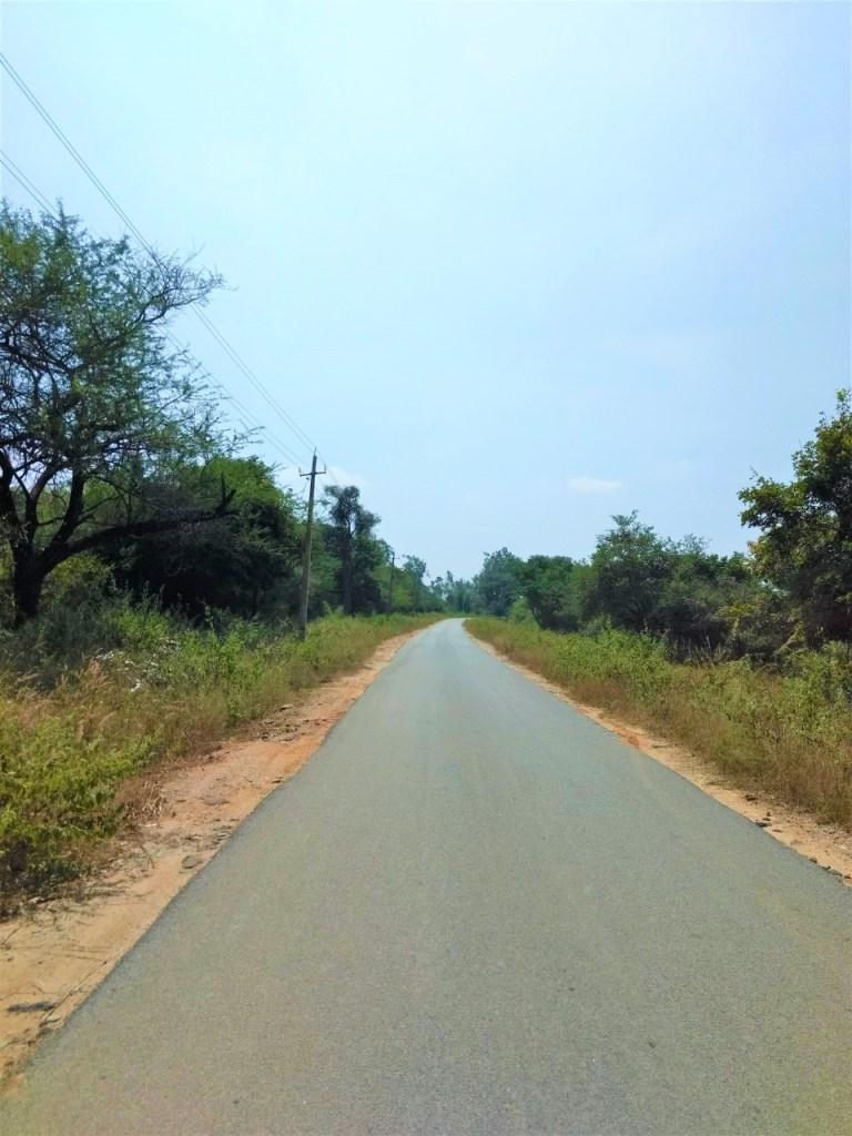 Ride Through Ragihalli Forest