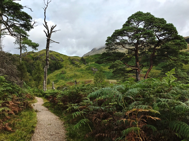 First hike in Scotland near the Glenfinnan Viaduct