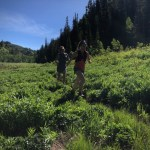 Big Mountain to Beer Bar: A City Creek Canyon Expedition