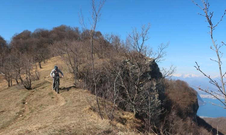 primavera-trails 6