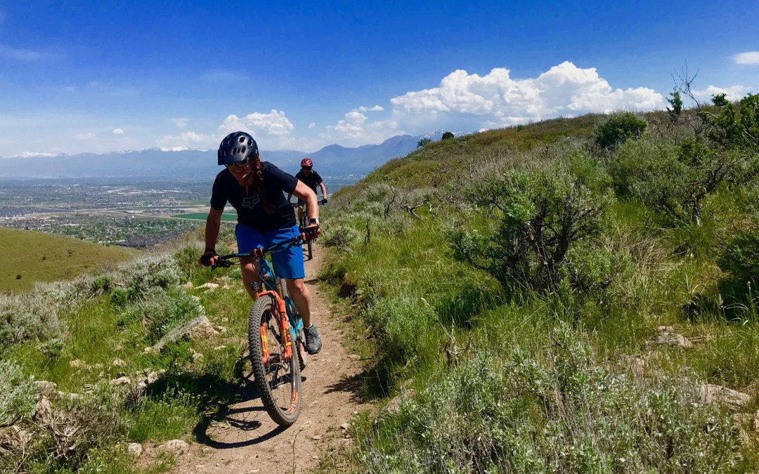 Love trails?! Celebrate Giving Tuesday Dec. 3rd