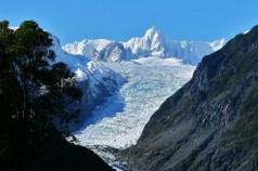 Fox-Glacier-New-Zealand