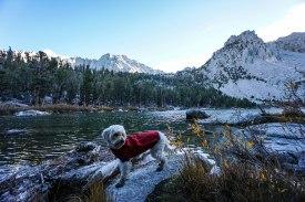Freezing Temps at Flower Lake