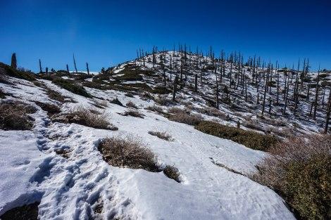Trail to Ontario Peak