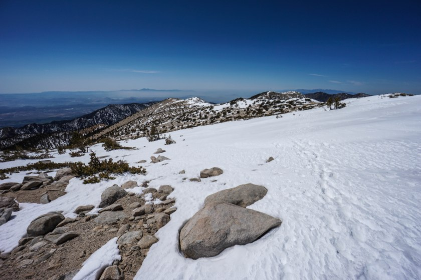 San Gorgonio via Vivian Creek Trail
