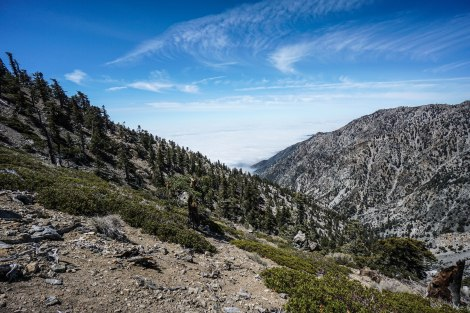 Cucamonga Peak via Icehouse Canyon
