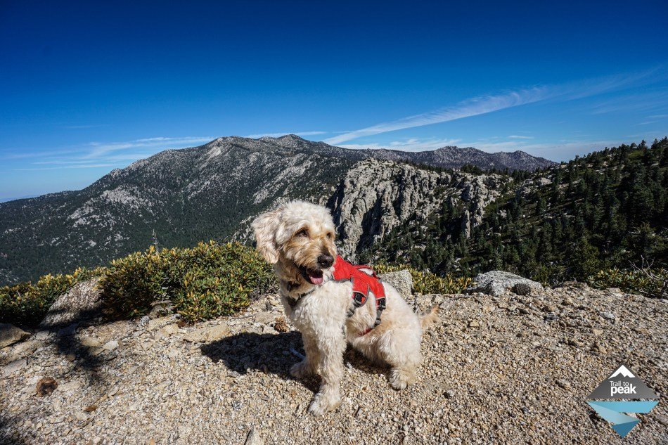 Tahquitz Peak Devils Slide Trail Fire Lookout Idyllwild