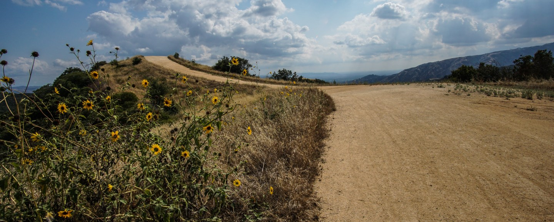 Marshall Canyon Trial Hike Loop Hike Hiking