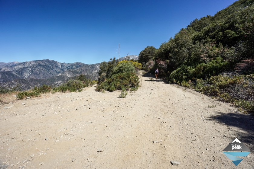 Sunset Peak Hike Mt Baldy With Dogs And Children