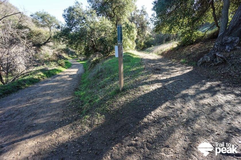 powder canyon and schabarum trail hike
