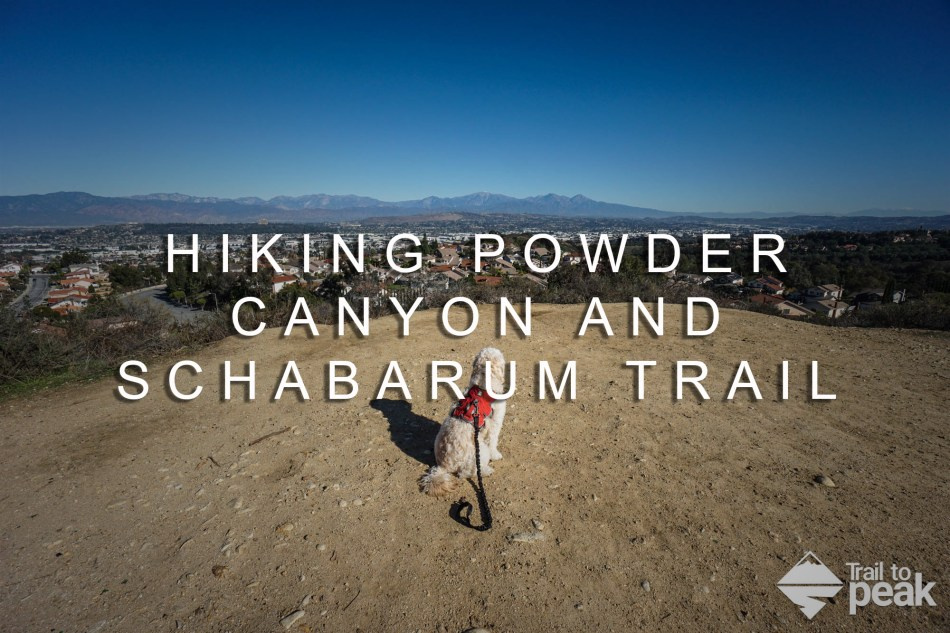 powder canyon and schabarum trail hike