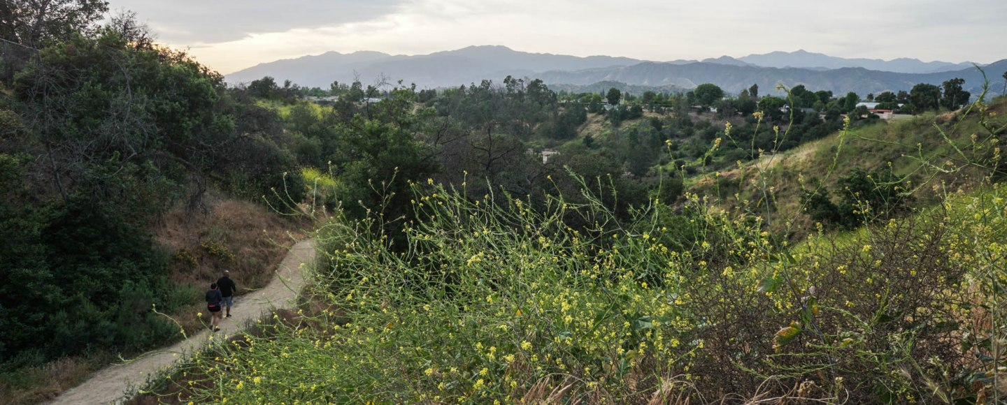Dog Friendly Hikes Los Angeles
